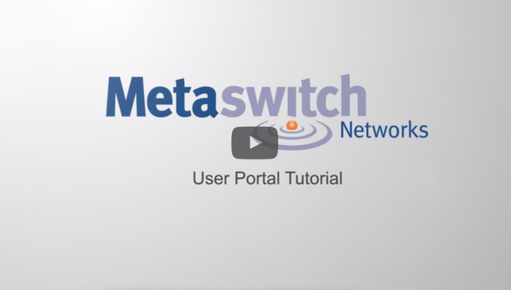 MetaSwitch Tutorial